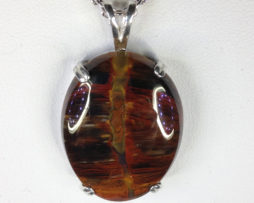 Petrified Wood Colorado Sterling Pendant